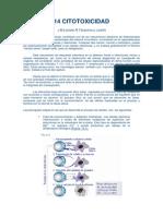 50330989-Citotoxicidad-Celular.pdf