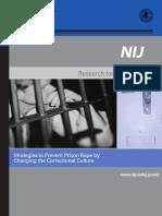 stratagies to prevent prison rape