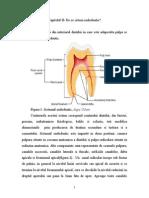 Sistemul endodontic