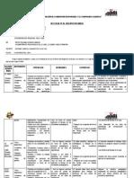 Paloma Informe Diagnostico