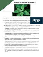 12 plantes sauvages comestibles à cuisiner.pdf