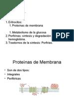 Pr de membrana y bilirrubina