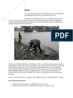 The Thames Foreshore