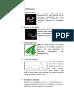 TIPOS DE FRACTALES y aplicaciones.docx