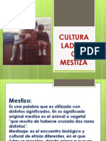 Cultura Ladina 2014
