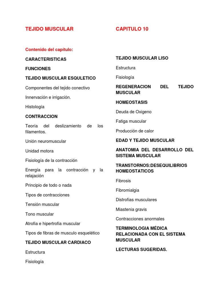 Bonito Capítulo 10 Sistema Muscular Anatomía Macroscópica Modelo ...