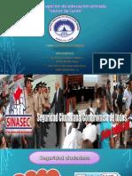 Seguridad Ciudadana (1)