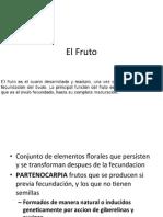 Flor y Fruto