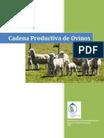 agroeconomia_ovino