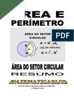 area do setor circular - conteudo.pdf