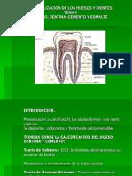 Mineralización Diente III.ppt