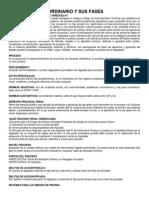 PROCESO PENAL ORDINARIO Y SUS FASES.docx