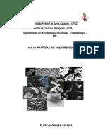 Apostilamicrobiologia2011, 1,2,3,5,11