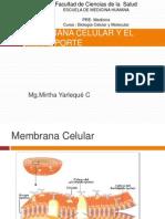 Membrana Celular_7.ppt
