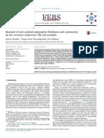 Blockade of Islet Amyloid Polypeptide Fibrillation - 2013