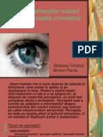 Perceptia Stimulilor Vizuali Si Perceptia Cromatica