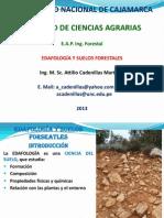 Edafología 01 2013 Minerales.