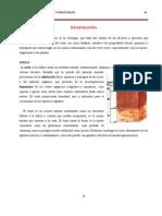 Edafología 03 2013 i Factores y Procesos