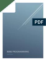 8086 Programming