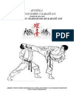 APOSTILA - Karatê Shotokan
