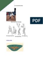 Peralatan Softball Dan Cara Bermain Sofball