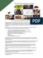Poziv Na Radionicu - Divlje Zivotinje - Zbrinjavanje-rukovanje-nega