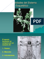 04.Sistema Esquelético. Osteología