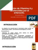 Absorción de Vitamina a y Carotenoides Por El