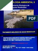 Clase 12 - Biotecnologia Ambiental II. Tratamiendo de Aguas Residuales