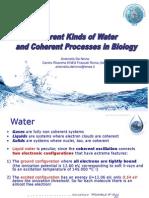 Water Conference- De Ninno