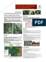 Chimpanzee Nest Construction in Southwest Cameroon