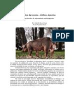 Actualizacion Sobre El Mejoramiento Genetico Porcino_2