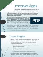 12 principios ageis