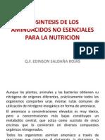 Biosintesis de Los Aminoacidos No Esenciales .10