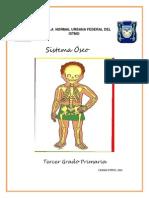Como Explicar los Huesos a Niños de Tercer Grado en Ciencias Naturales.docx