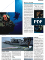 diving-cozumel-general-information_v1_m56577569830500950.pdf