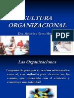 Cultura Organziacional 1