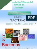 bacterias-090611214837-phpapp02
