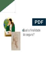 Apostila Risco Seguros Souza Marques