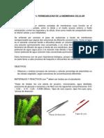 Guia de Laboratorio 5_plasmolisis