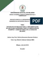 Proyecto Cpa p.sabila Sept. (1)