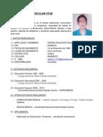 Curriculum Vitae Paty 2013