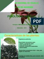 1 CLASE DE FISIO-1