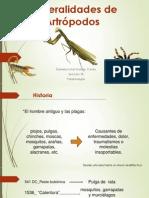 Generalidades de Artrópodos