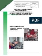 Sg_poe_02 - Procedimiento Carniceria (2)