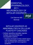 Salzman Neurobiology of Bipolar Disorder