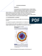 2.Microsuperficies y Microoganismos Como Indicadores Del Deterioro Ambiental