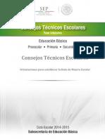 ORIENTACIONES PARA ESTABLECER LA RUTA DE MEJORA ESCOLAR 30062014 (1).pdf
