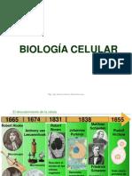 Celula_procariota