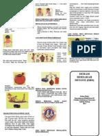Leaflet Dbd Dyn